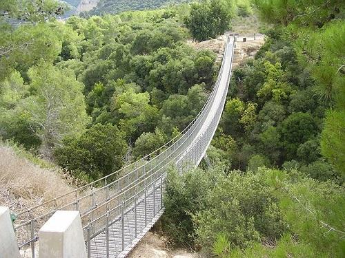 הגשר התלוי בעין בשור - צילום